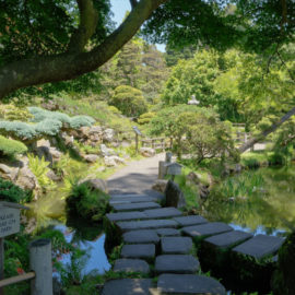 Japanese Tea Garden | San Francisco